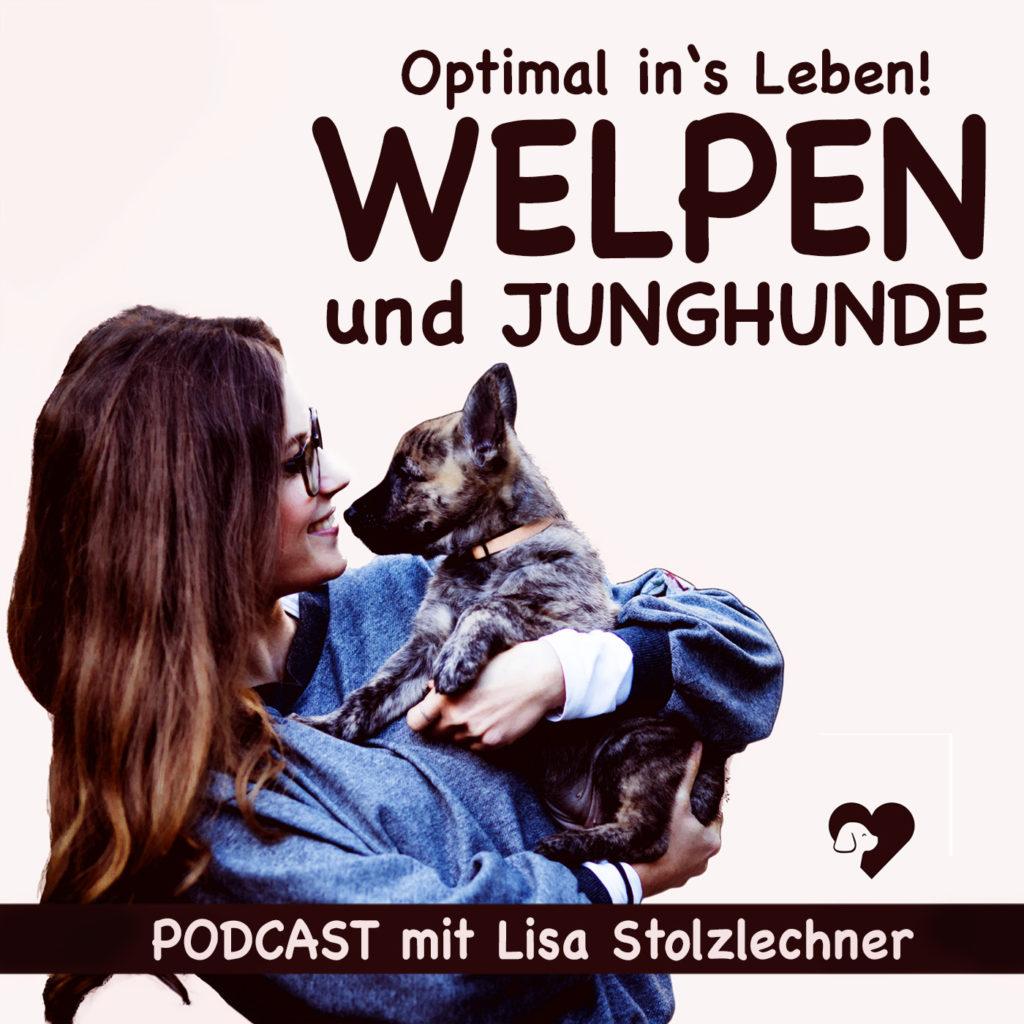 Titelbild von Podcast Optimal ins Leben mit Lisa Stolzlechner