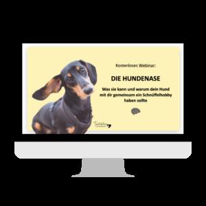 Die Hundenase Webinar